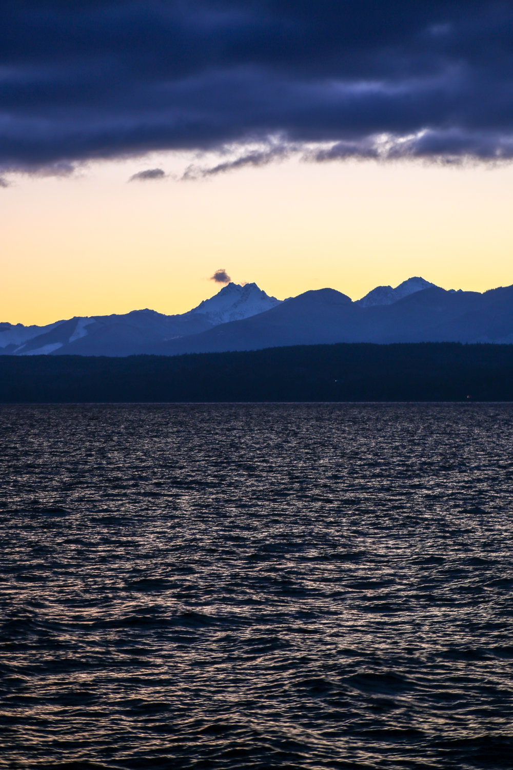 The Olympics from Kitsap Memorial State Park