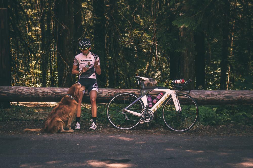 bike 2-1.jpg