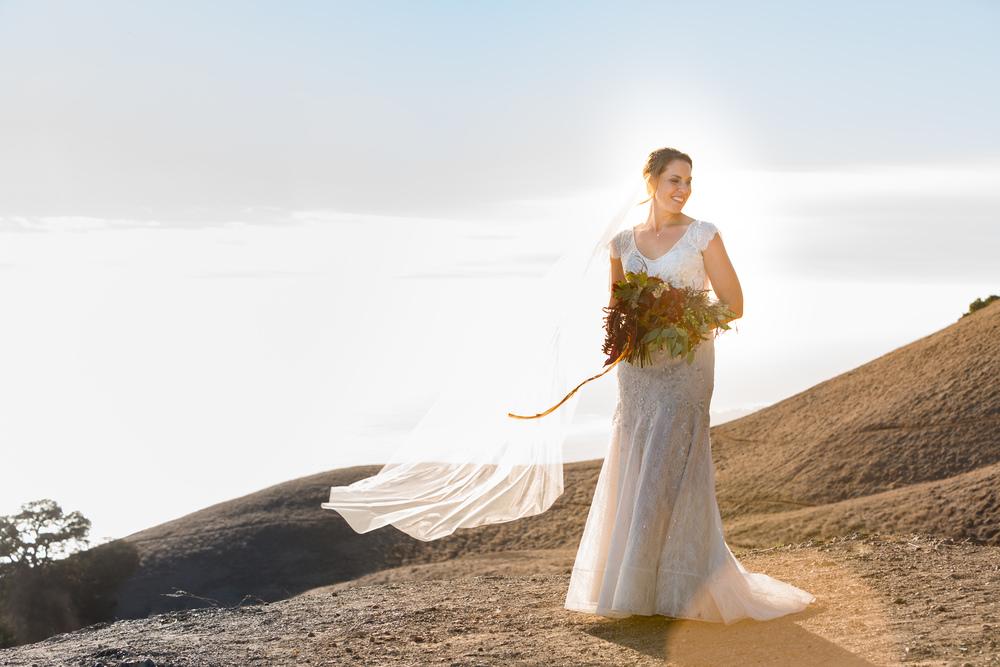 jenni-stephen-wedding-mt-tam-marin-355.jpg