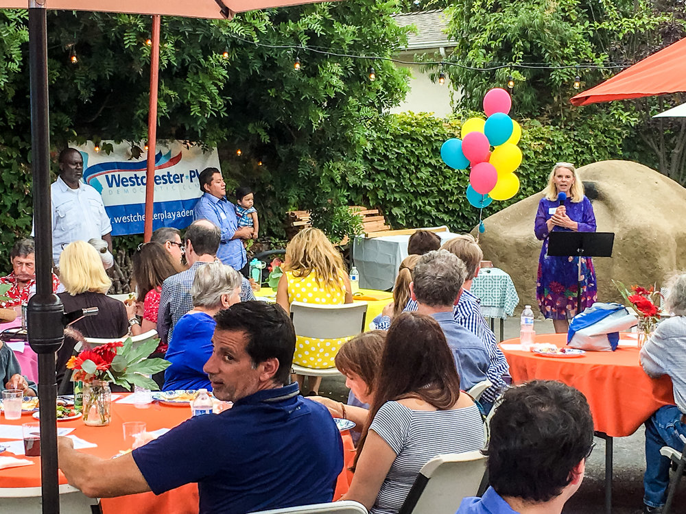 WPDC Summer Party 2017-5.jpg