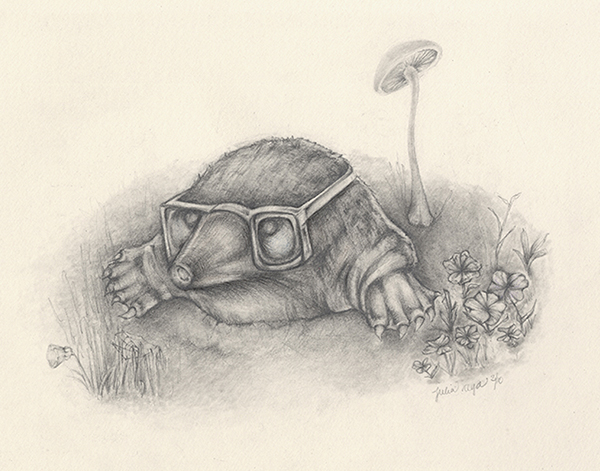 CURIOUS MOLE   Graphite Illustration