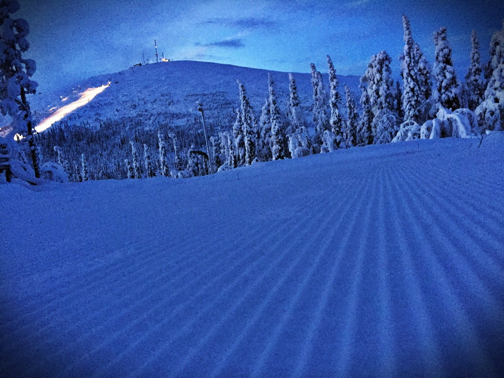 Fresh corduroy on the trail everyday!!