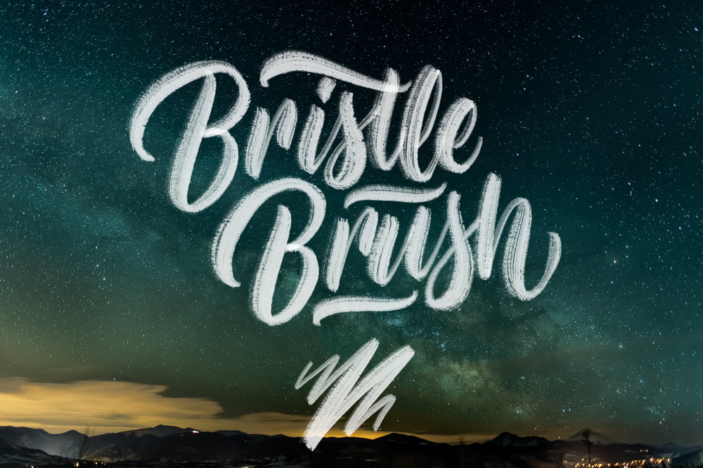Bristle-Brush.jpg