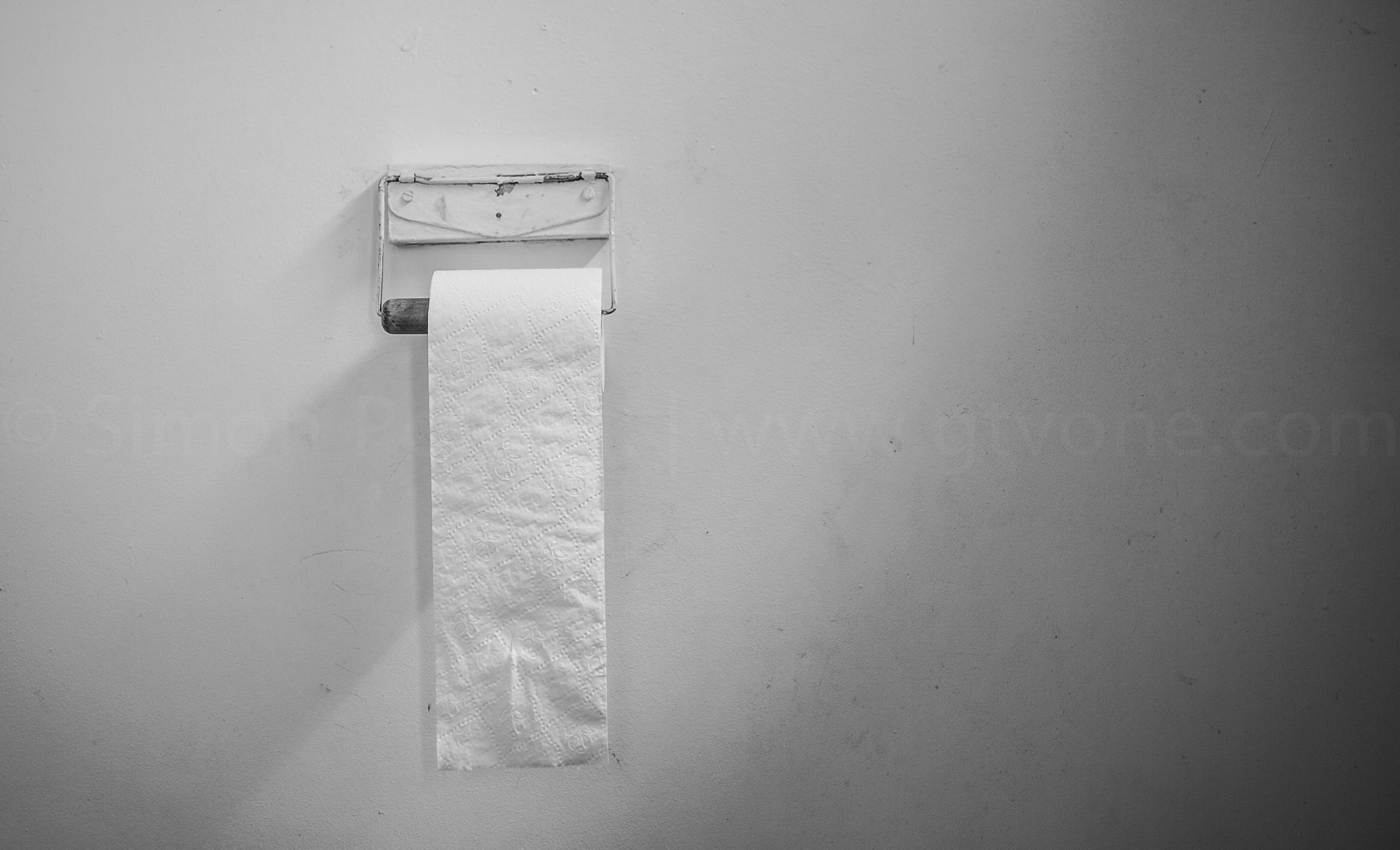 sustainable_green_soft_nz_toilet_paper