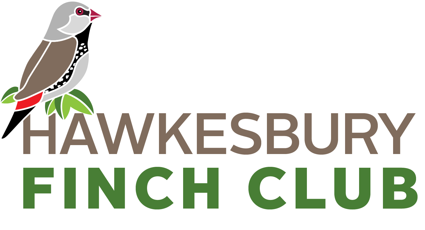 Hawkesbury Finch Club