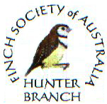Hunter_Valley_Branch.jpg
