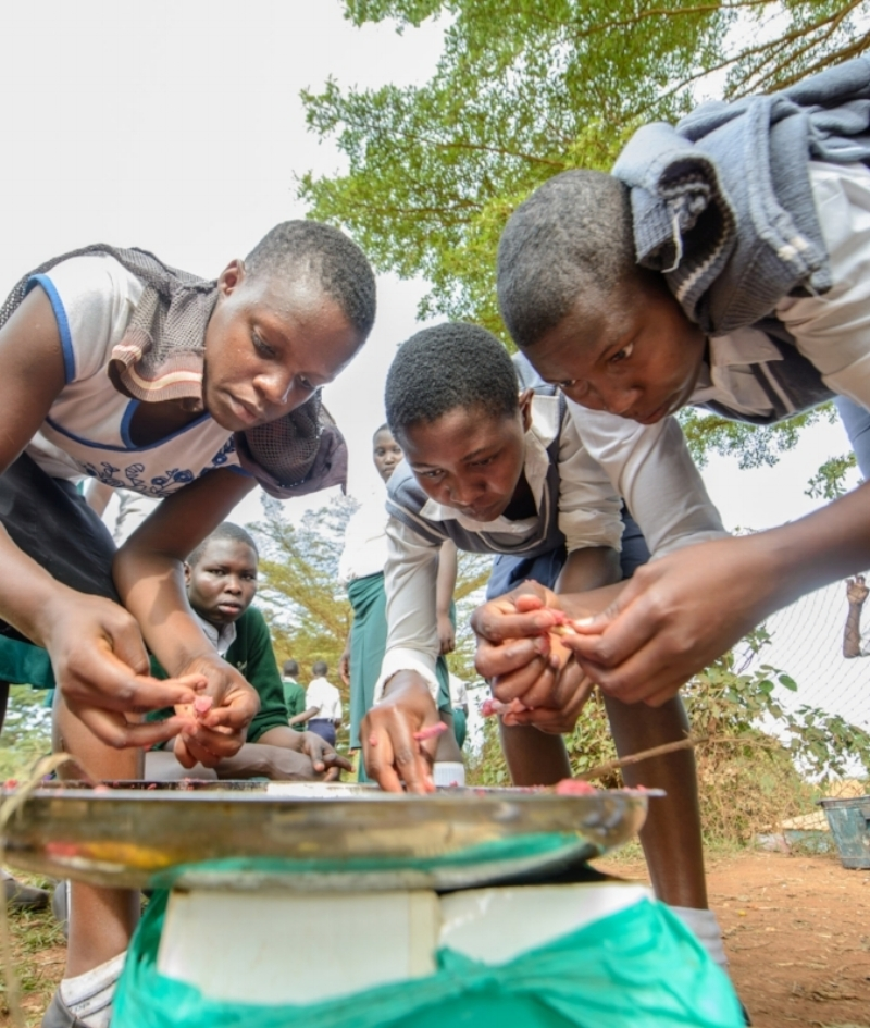 Educate! facilitates hands-on experience in a safe learning environment, so students have the opportunity to explore new challenges and the confidence to learn from mistakes they make along the way. -