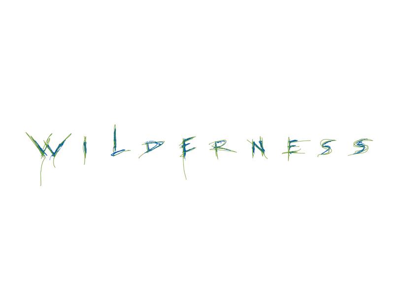 Wilderness Flowers