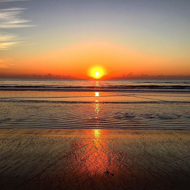 Good morning and happy Monday from #FlaglerBeach!  Great shot from @jerseygirl604 thanks for sharing!  Make it a great week everyone! 🌅🌞🍍🏄🍊☀️🌅🌞🍍🏄🍊☀️🌅🌞 #ThingsToDo from #FlaglerCollege in #StAugustine to #FlaglerAve in #NewSmyrnaBeach #Flagler #PalmCoast #FlaglerBeach #FlaglerLife #FlaglerBars