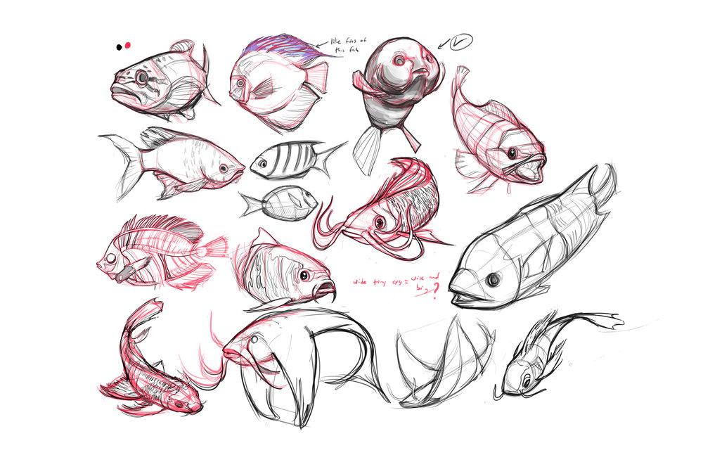 FISH studies.jpg