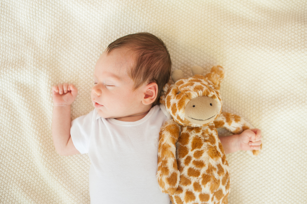 I just can't get over this photograph. It makes my heart feel all fuzzy. Luke and his giraffe lovey make for a sweet, simple, memorable portrait. I joked with Kathleen that he'll probably end up picking out another lovey that's his favorite when he's a little older! But until then, I'll pretend he and giraffe are great buds.