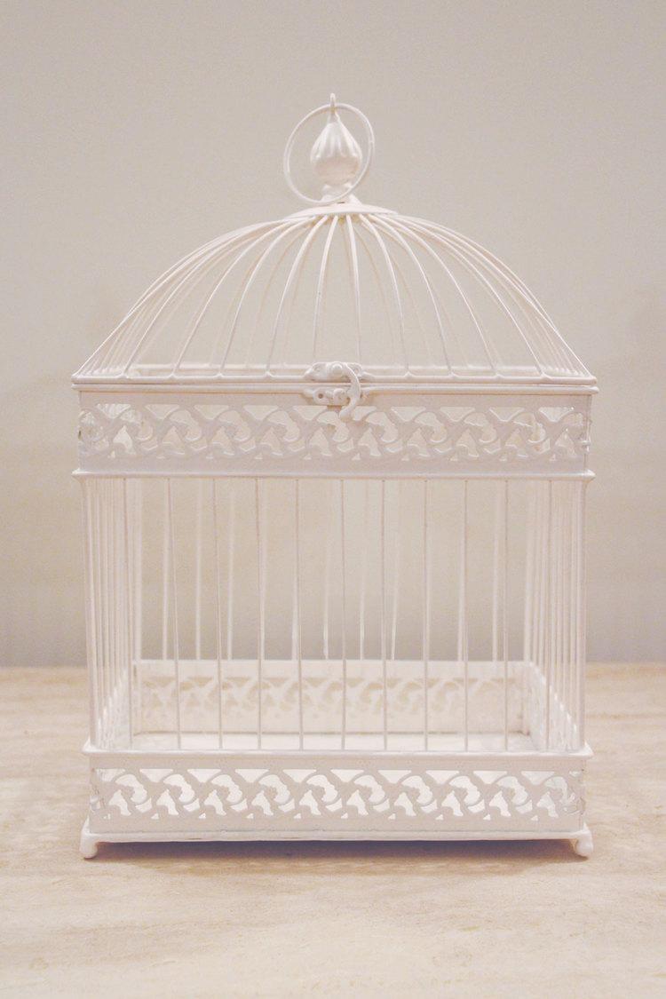 Rectangular Birdcage