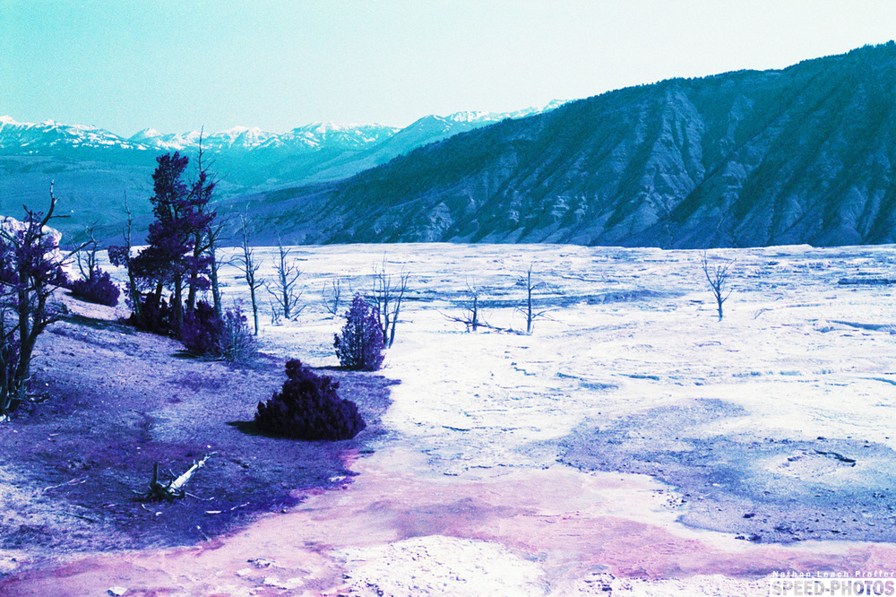 small lomochrome 1.jpg