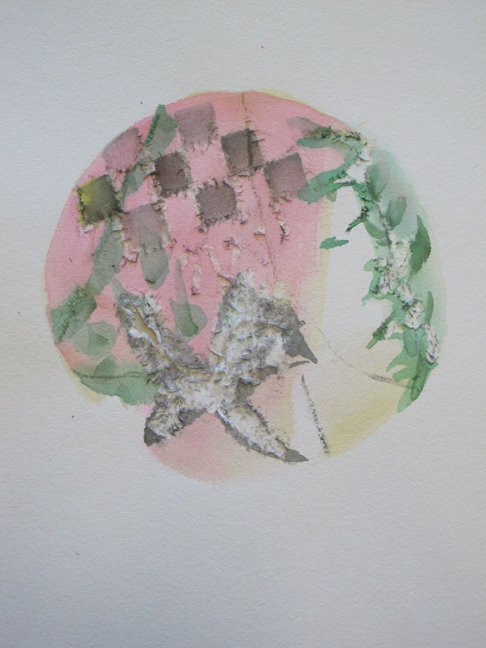 SHRIKE  -  watercolor
