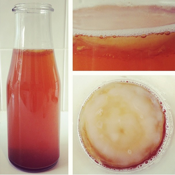You can grow your own SCOBY using a bottle of store-bought raw kombucha. Use the method outlined in the recipe but instead of adding a scoby, add a whole bottle of kombucha. Make sure it's unpasteurized. A 'mother' should form on top after a week or so.