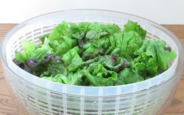 lettuce, fresh vegetable, salad, clean vegetable