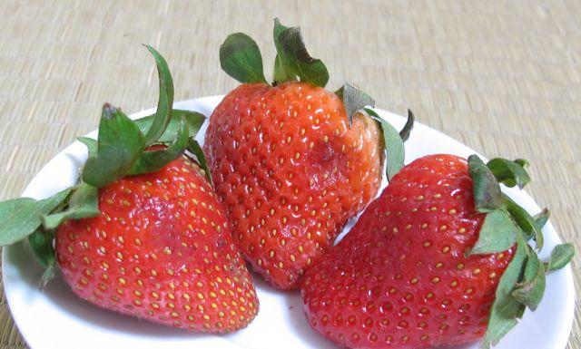 strawberries, fruit, choose berries