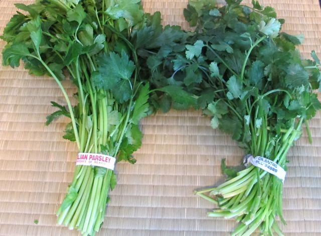 guacamole - cilantro and parsley.jpg