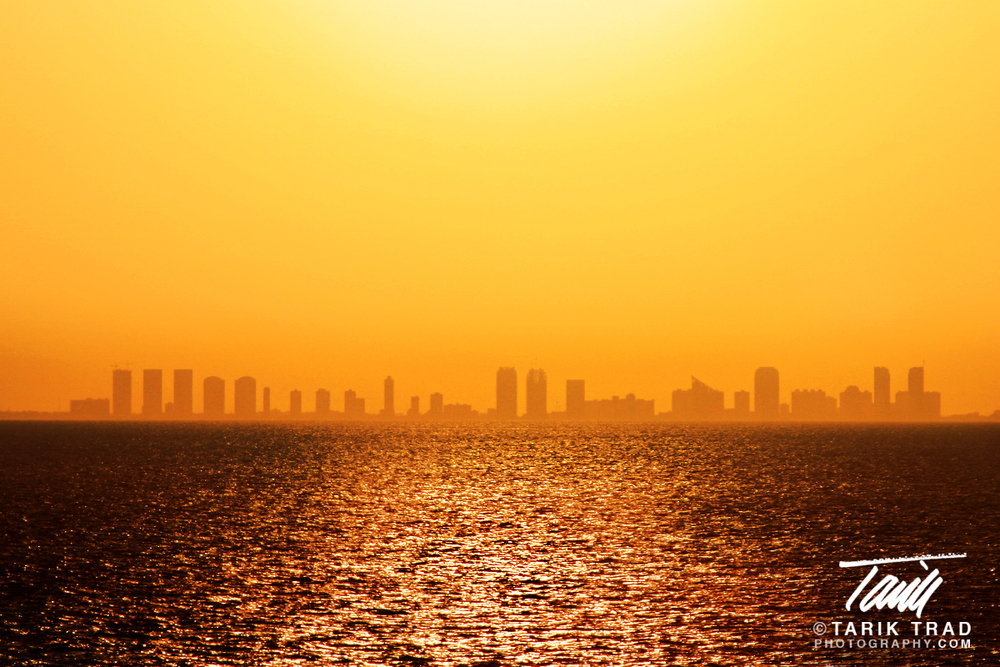 Silhouette of Miami Skyline