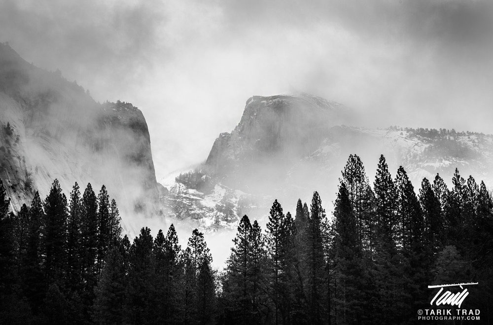 Half Dome through the Mist