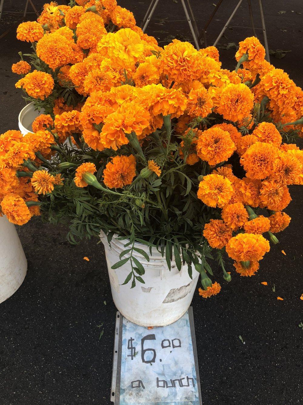 Marigolds: Farmer's Market $6.00