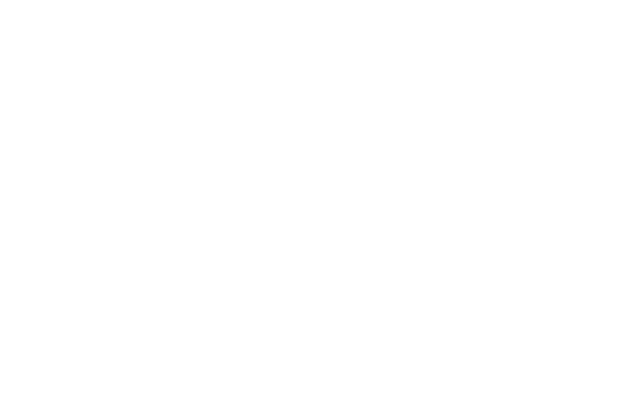 Friends of the Ithaca Youth Bureau