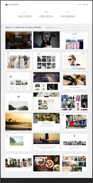 squarespace-V6-templates-oh-the-choices-300px.jpg