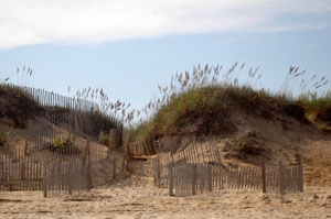 Dunes in the Outer Banks