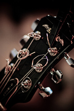 Guitar head photo by Tanya Peterson