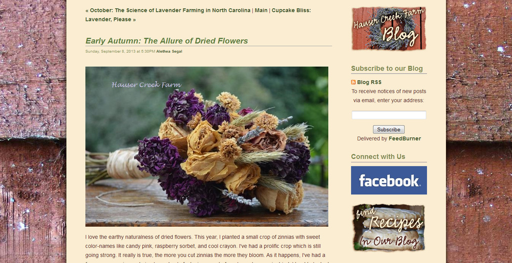 blog-post-on-hauser-creek-farm-website-with-beautiful-shot-of-dried-lavender-bouquet.jpg