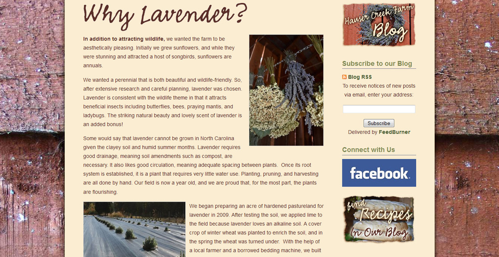 hauser-creek-farm-web-page-about-benefits-of-lavender.jpg