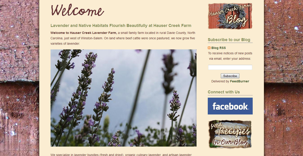 squarespace-slideshow-shows-off-beauty-of-lavendar-growing-in-north-carolina.jpg