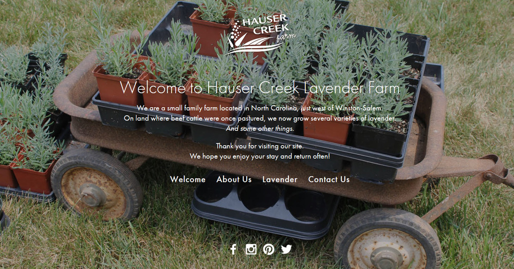 hauser-creek-farm-north-carolina-lavender-supplier-squarespace-website_0001_FireShot Screen Capture #350 - 'Hauser Creek.jpg