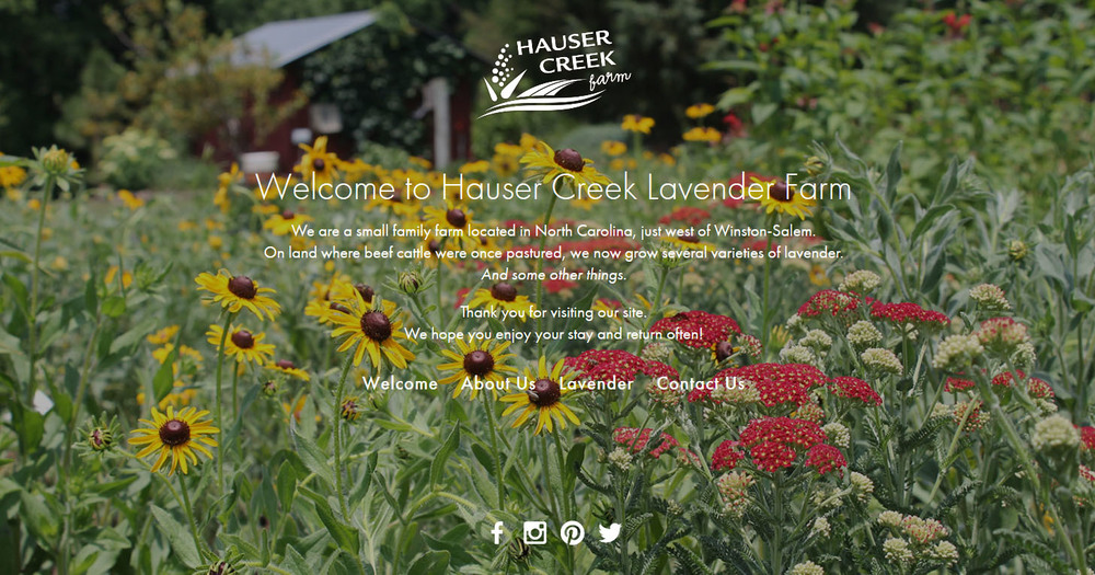 hauser-creek-farm-north-carolina-lavender-supplier-squarespace-website_0005_FireShot Screen Capture #354 - 'Hauser Creek.jpg