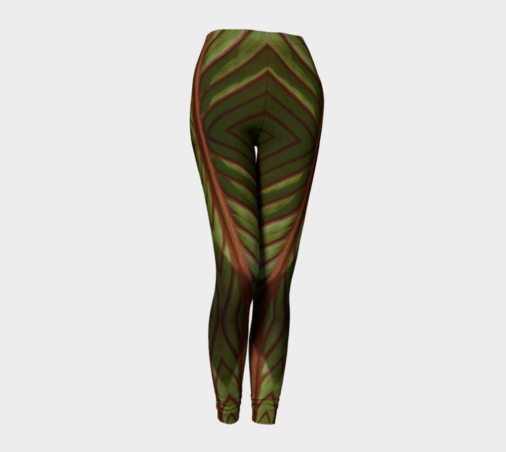 """""""Canna Reflections"""" Abstract Leggings by Melody Watson"""