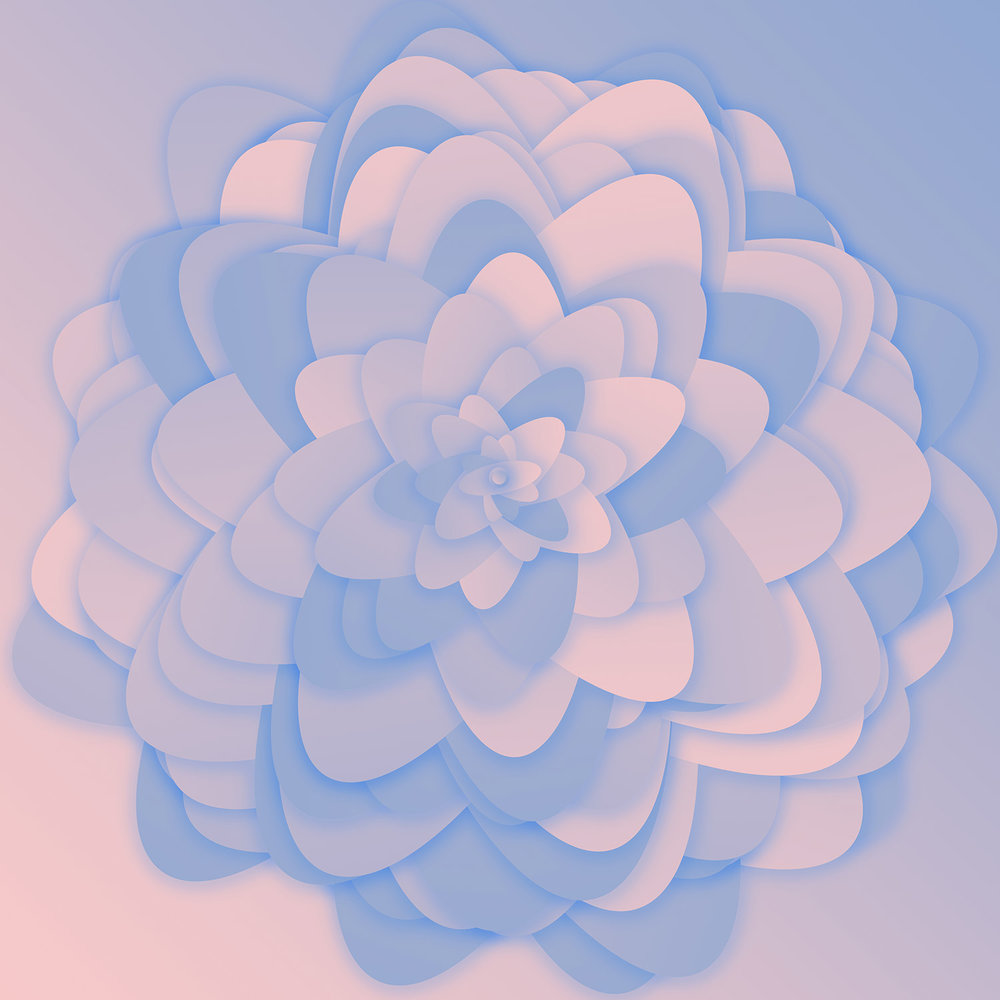 serenity-floral-design-of-rose-quartz-and-serenity-blue-pantone-color-of-year-2016-website-preview.jpg