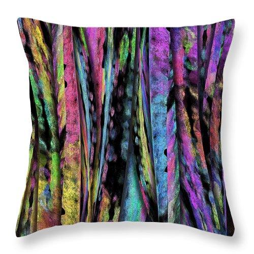 Throw Pillows from Pixels.com