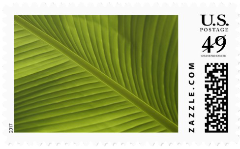 banana_leaf_color_photo_detail_v002_postage.jpg.png