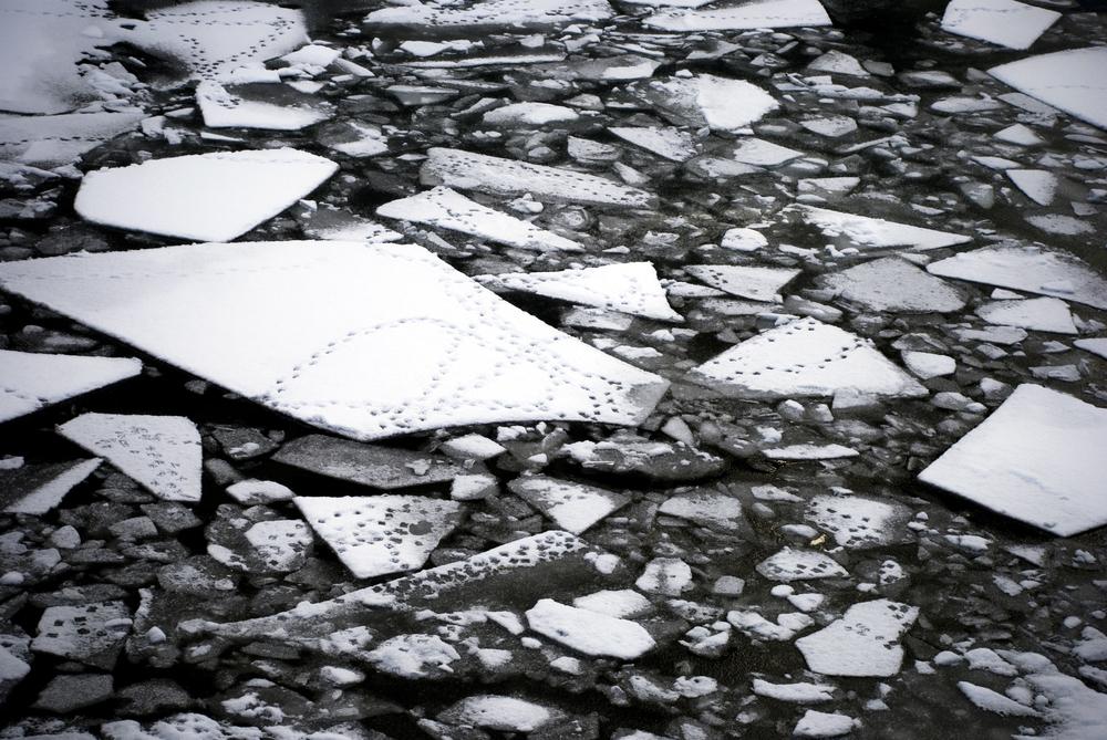 23_footsteps on ice.jpg