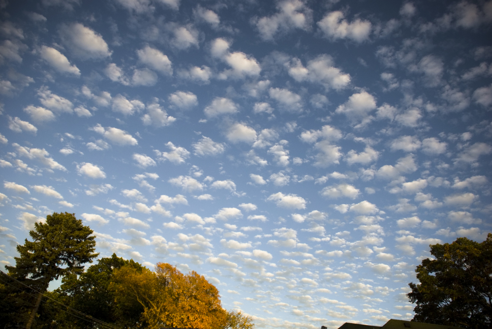 11_fall sky.jpg