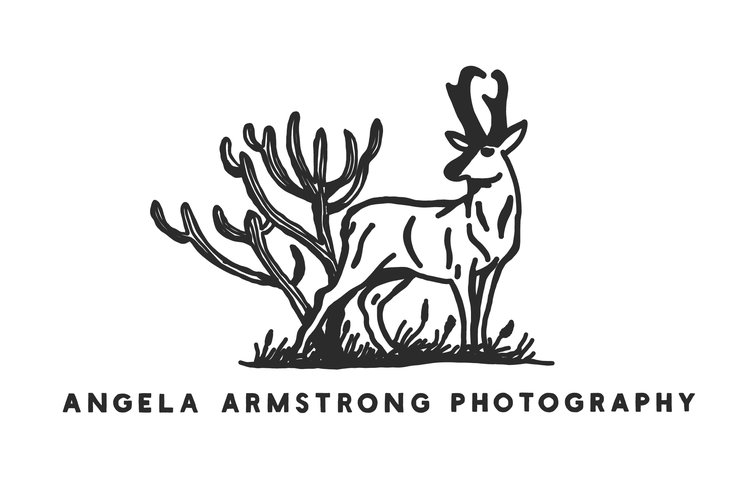 Angela Armstrong Photography