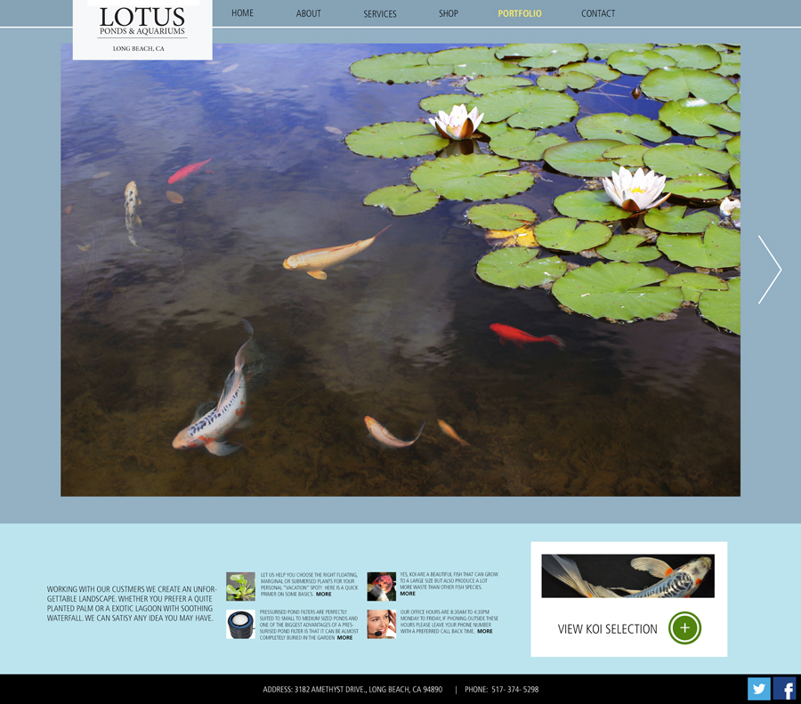 lotus_portfolio_marcus_collins.jpg