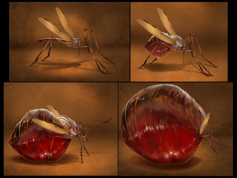 mosquito_full2.jpg