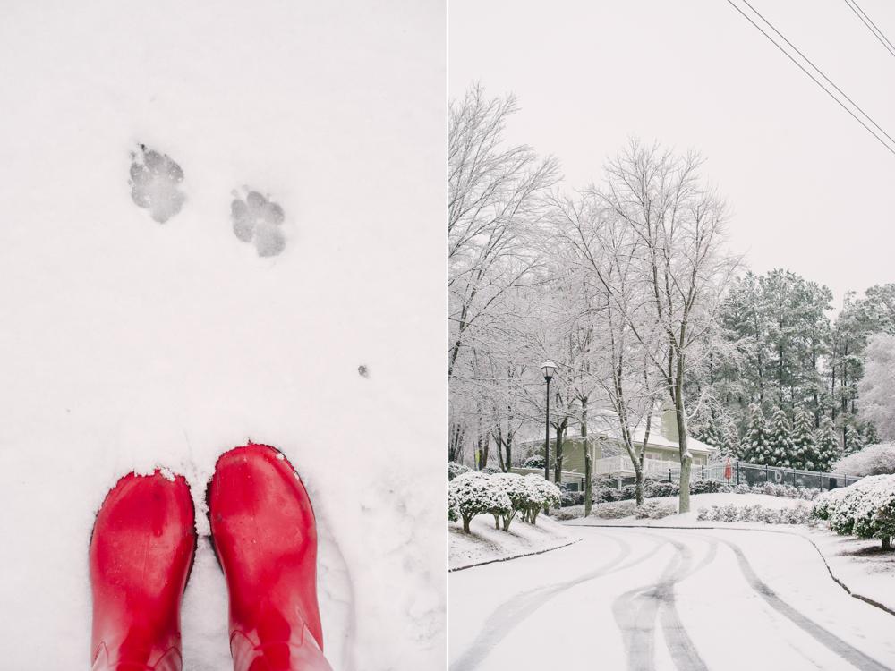snow-1005.jpg