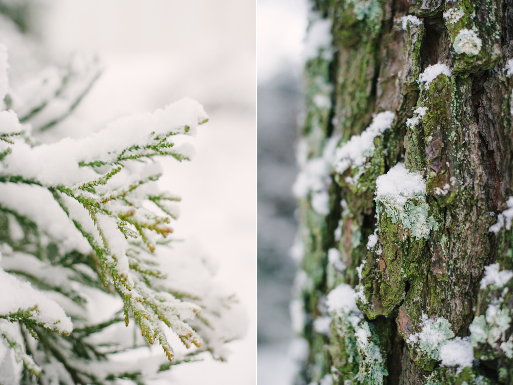 snow-1004.jpg