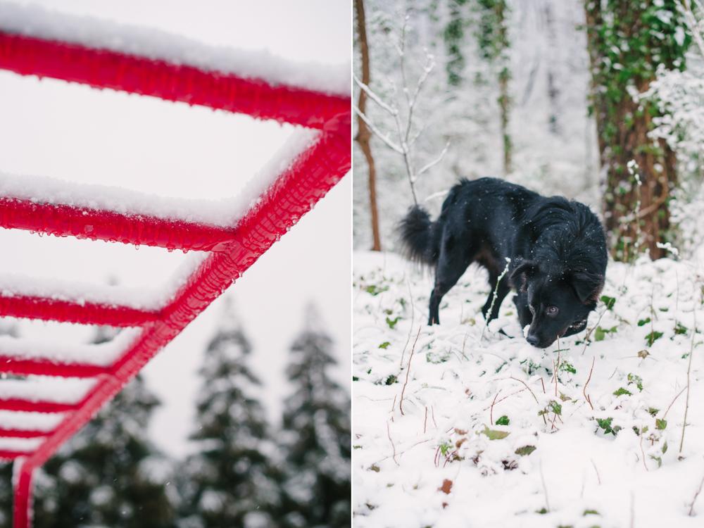 snow-1006.jpg