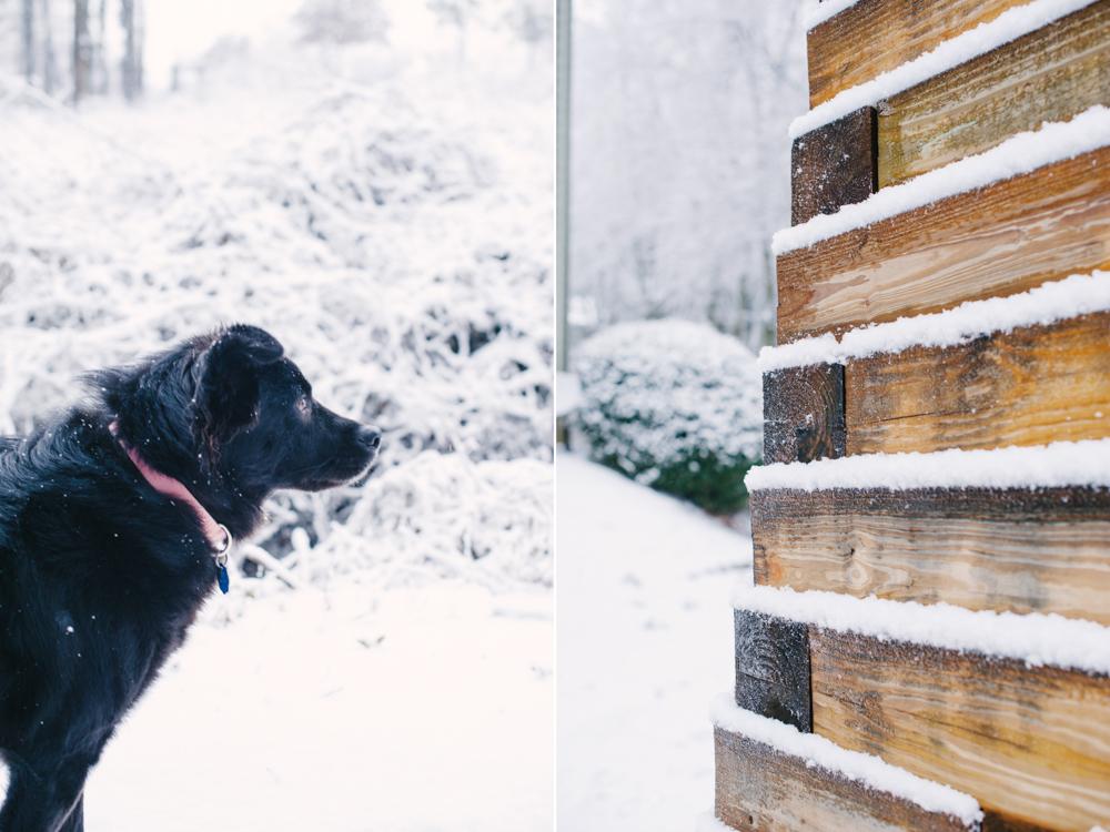 snow-1010.jpg