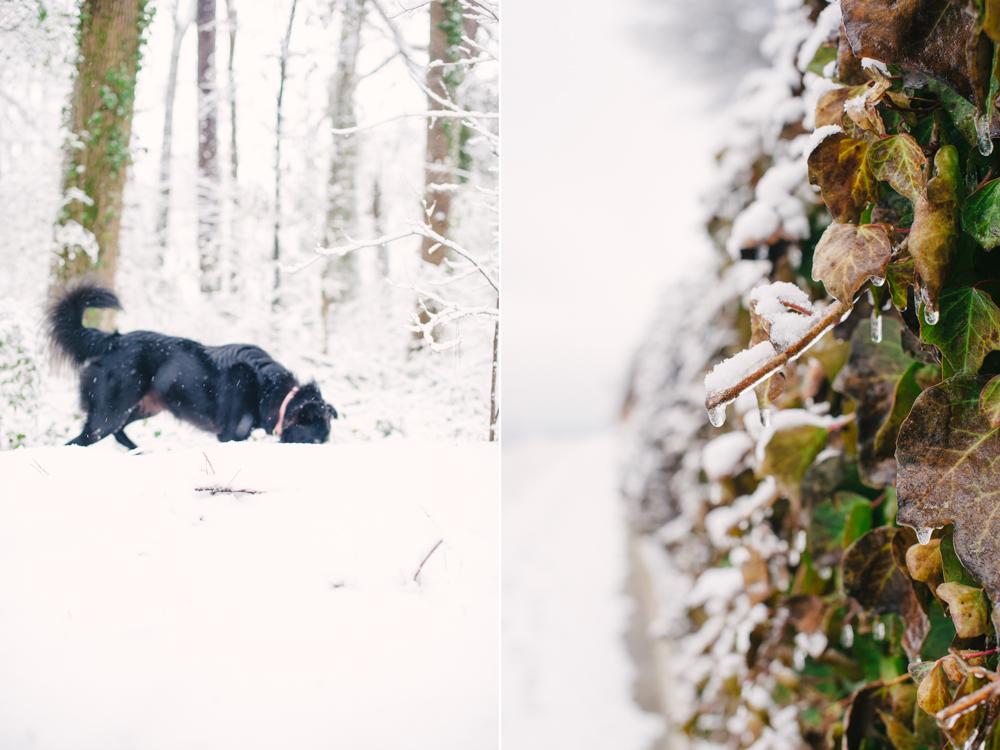 snow-1011.jpg
