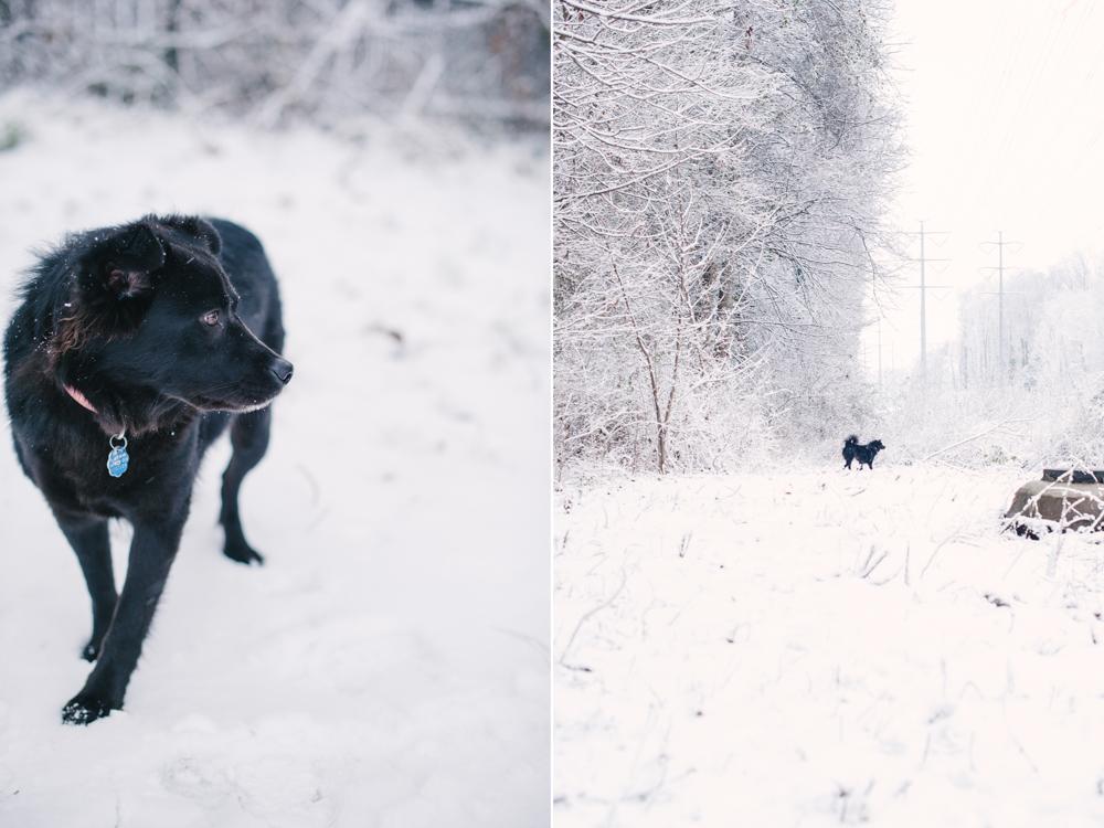 snow-1012.jpg