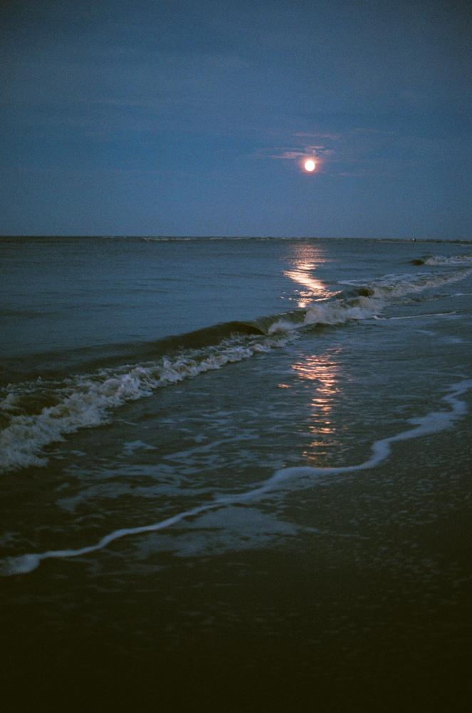 beach-1018.jpg